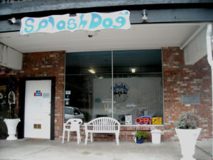 Splash Dog Spa